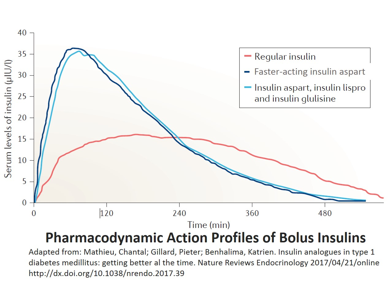 Pharmacodynamic action bolus insulins